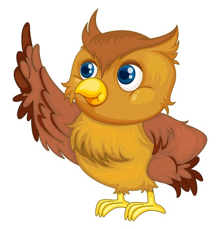 illustration of an isolated owl cartoon illustration