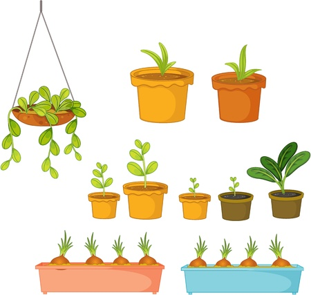 plant stand: Illustration of  a pots on white