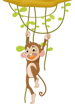 mono caricatura: Ilustración de un mono de dibujos animados en blanco