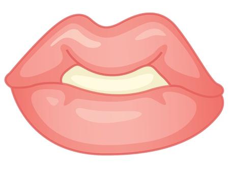 tactile: illustration of lips on white Illustration