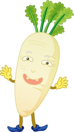 illustration of vegetable on white Vector