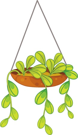 plant pot: illustration of plant in a pot on white