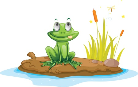 Illustration of  a cartoon frog on white Stock Vector - 13131370