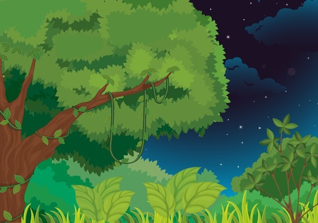 forest cartoon: Forest illustration  on a white background Illustration