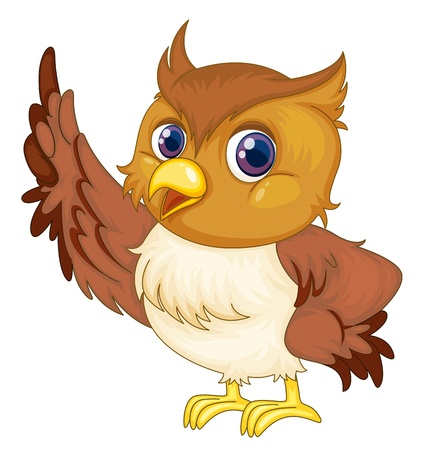 cartoon animal: illustration on of an owl on white