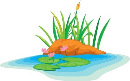 river rock: illustrazione, fiori di loto