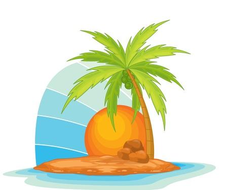 Illustration of  a coconut tree on island  Vector