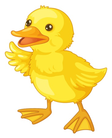 Illustration of an isolated duck Illustration