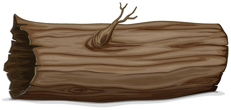 log on: Illustration of a detailed hollow log