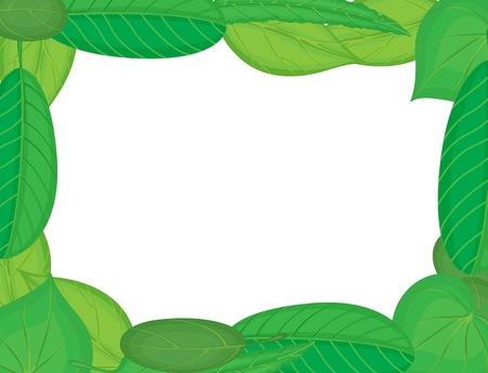 Illustration of a leaf frame Vector