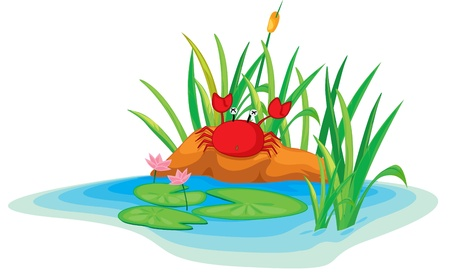 illustration of a crab on island Vector