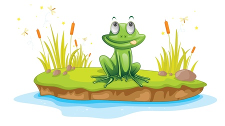 frog cartoon: Illustration of  a cartoon frog on white