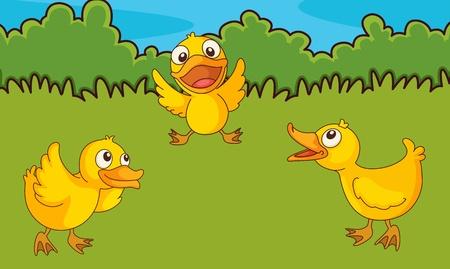 Illustration of chicks in a field Vector