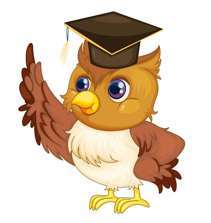 graduating: Illustration of an old wise owl Illustration