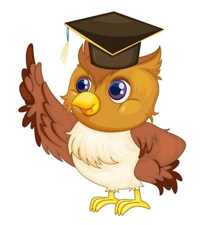 degree: Illustrazione di un vecchio saggio gufo