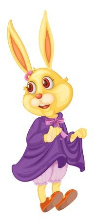 undergarment: Illustration of cute bunny on white Illustration