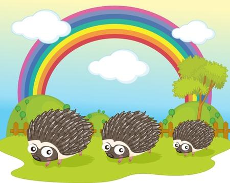illustration of hedgehog on rainbow background Vector