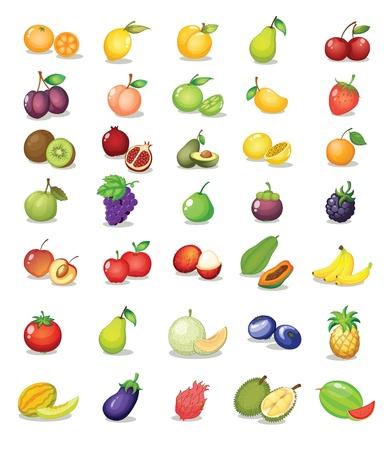 Ilustración de la fruta en el fondo blanco