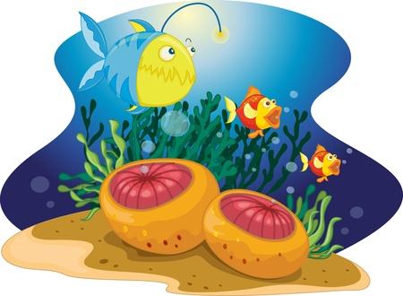 sealife: Seeteufel mit zwei kleineren Fischen