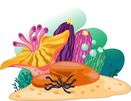 Illustration of sea plant on white