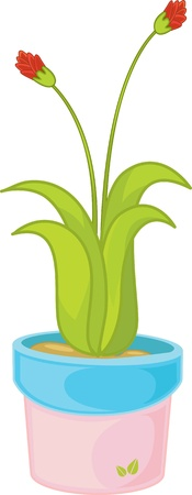 indoor bud: Illustration of plant in a pot