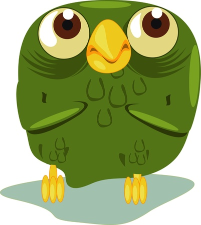 An old owl close up Vector