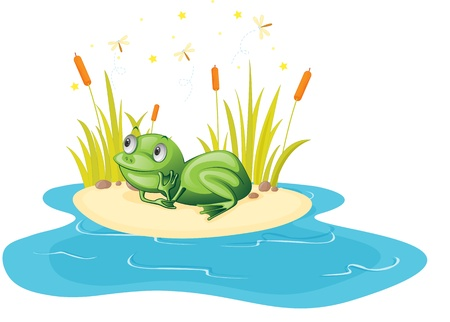 illustration of frog sitting near pond Vector