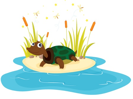 pond water: illustration of tortoise sitting near pond