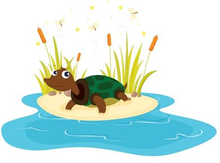 Ilustración de la tortuga sentado cerca del estanque Ilustración de vector