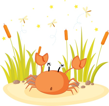 illustration of crab sitting on rock Vector