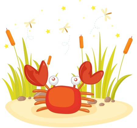 illustration of crab sitting on rock Stock Vector - 13215358