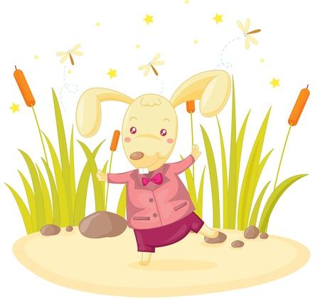 illustration of rabbit standing on rock Stock Vector - 13215385