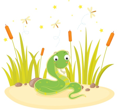 white snake: illustration of snake sitting on rock
