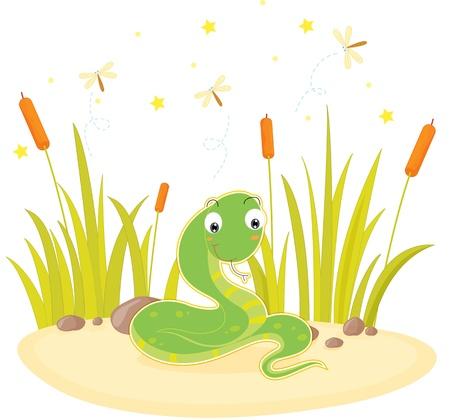 grass snake: illustration of snake sitting on rock