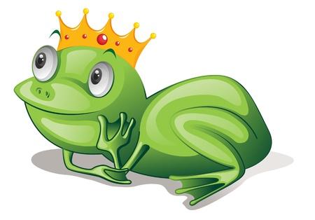 cartoon frog: Illustration of green frog on white
