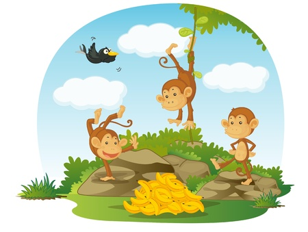 illustration of three monkeys and bananas illustration