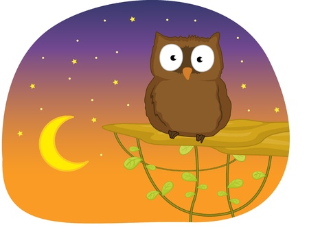 illustration of owl in the night Stock Illustration - 13215440