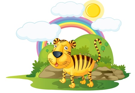 yellow tigers: illustration of tiger on rainbow background