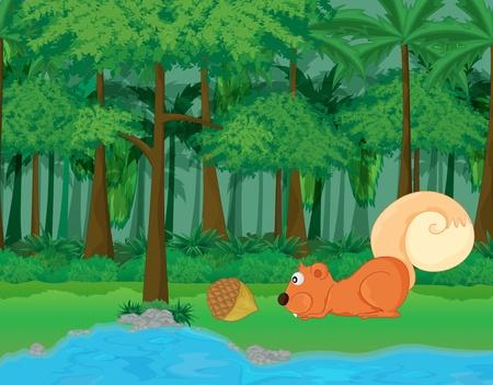 ardilla: bosque y el agua la escena de dibujos animados Foto de archivo
