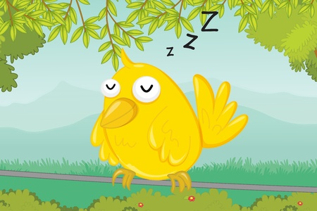 illustration of bird sleeping on a wire illustration