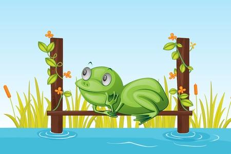 cartoon frog: illustration of frog sitting on wooden bridge