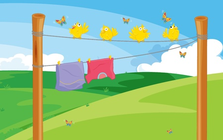 clothes peg: Birds and clothes drying illustration