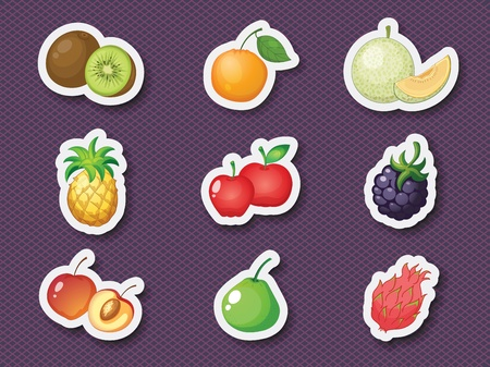 mandarin orange: Illustration of mixed fruits in sticker style