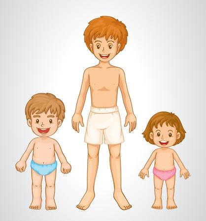 jungen unterwäsche: Anatomie von Körperteilen sbilings zeigt Wachstum