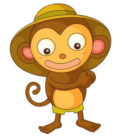 safari animal: Illustration of a safari monkey