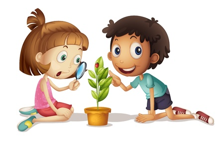 observation: Illustration of a boy and girl studying a plant Illustration