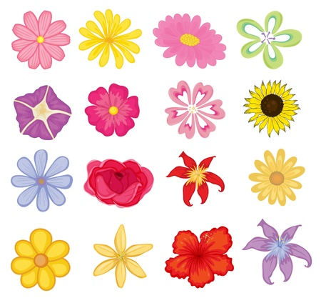 Illustrated set of colorful flower objects