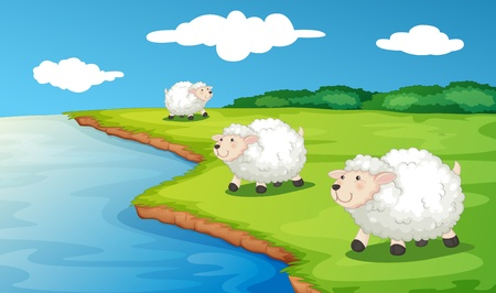 Illustration of 3 sheep by the water