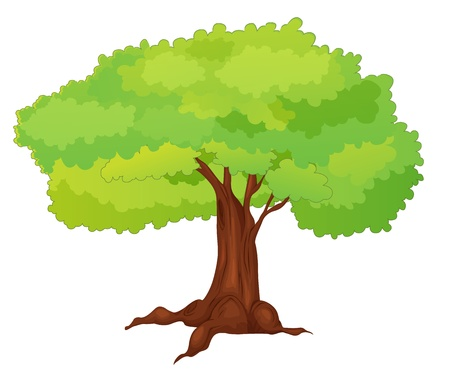 leafy: Illustration of single isolated tree - cartoon style