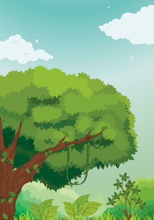 lush jungle scene during the day Vector
